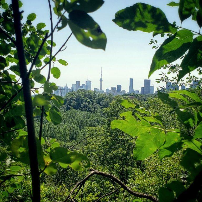 Toronto Income Property Newsletter – September 2019