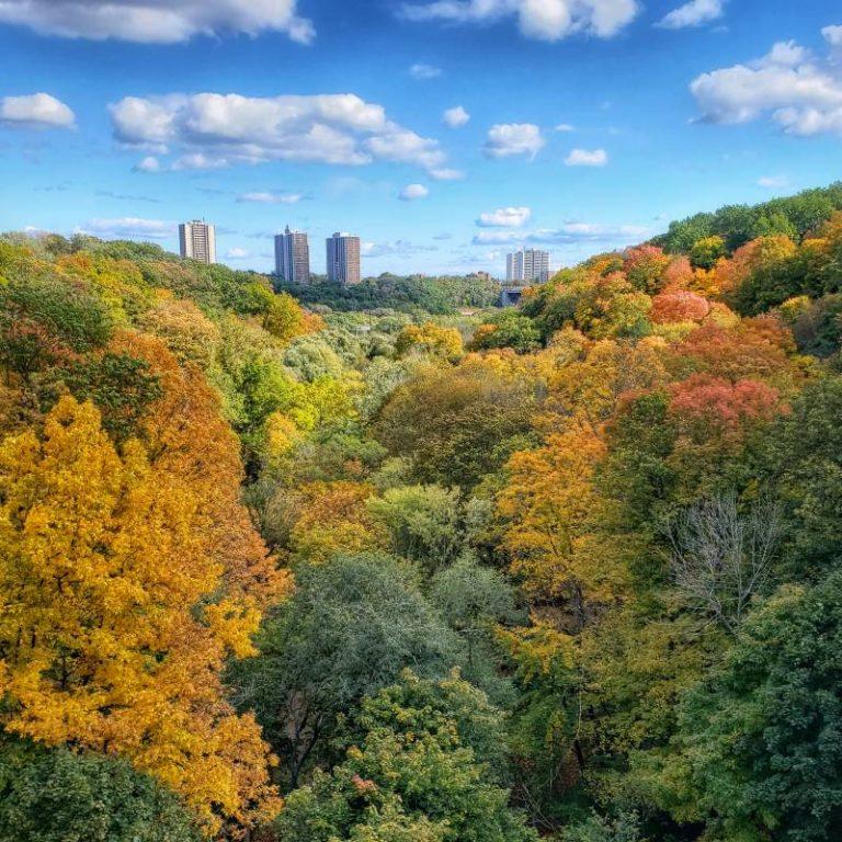 Toronto Income Property Newsletter – November 2019