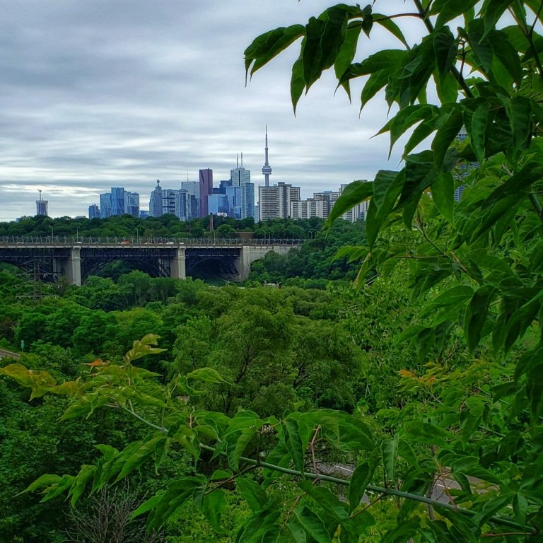 Toronto Income Property Newsletter – Summer 2021